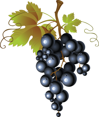 grape_png2970